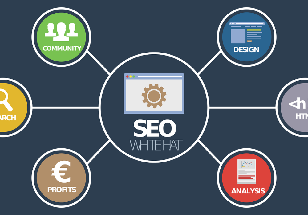 Complete Step by Step Guide to Learning SEO for Dummies